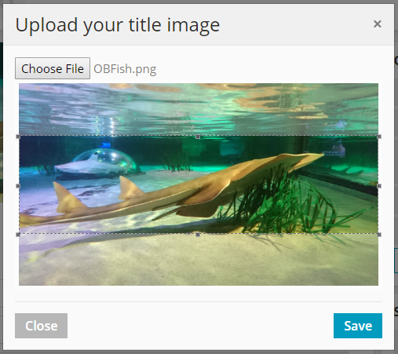 Profil Page Image Upload Modal Screenshot